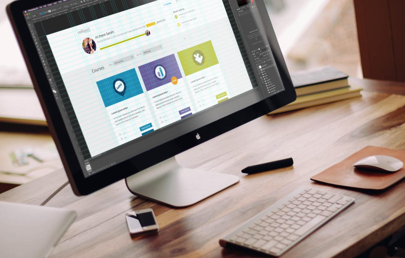 Wellspect e-learning
